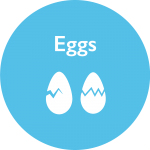 vitamin d in eggs