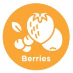vitamin c berries